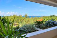 View from the second floor, Casa Phil, luxury rental in Las Terrenas